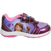 Sapatos Rapariga Sapatilhas Sofia SO000851-B2049 Morado