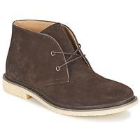 Sapatos Homem Botas baixas Cool shoe DESERT BOOT Castanho