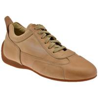 Sapatos Homem Sapatilhas Bocci 1926  Bege