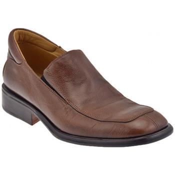 Sapatos Homem Richelieu Bocci 1926  Castanho