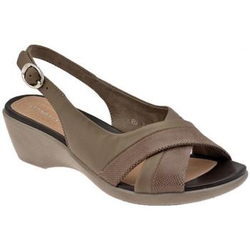 Sapatos Mulher Escarpim Stonefly  Multicolor