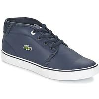 Sapatos Rapaz Sapatilhas Lacoste Ampthill 316 2 Azul