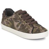 Sapatos Rapariga Sapatilhas Geox KIWI GIRL Verde