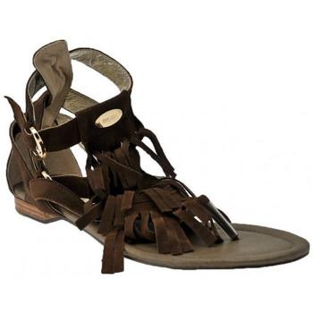 Sapatos Mulher Sandálias Swish  Castanho