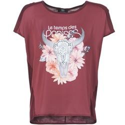 Textil Mulher T-Shirt mangas curtas Le Temps des Cerises CRANEFLO Bordô