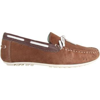 Sapatos Homem Mocassins MTNG 83515 Marrón