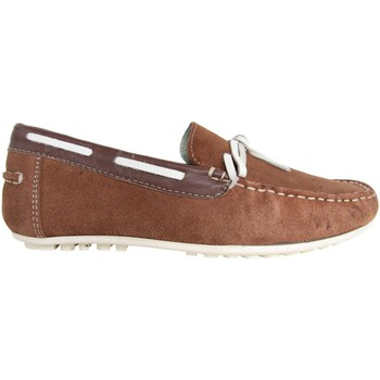 Sapatos Homem Mocassins MTNG 83515 Marr?n