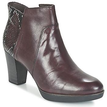 Sapatos Mulher Botins Tamaris VICHA Bordô