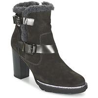 Sapatos Mulher Botins Fericelli FAIKA Cinza