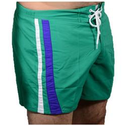 Textil Homem Shorts / Bermudas Speedo