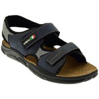 Sapatos Homem Sandálias Inblu