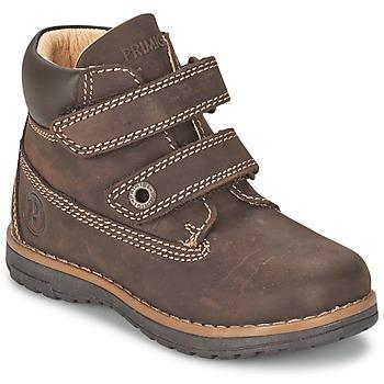 Sapatos Rapaz Botas baixas Primigi ASPY 1 Castanho