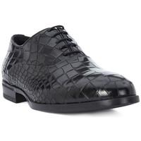 Sapatos Homem Sapatos Eveet CROCCO NERO Nero