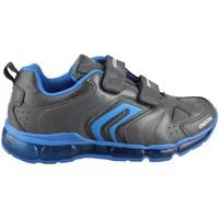 Sapatos Criança Sapatilhas Geox ANDROID B.D. AZUL