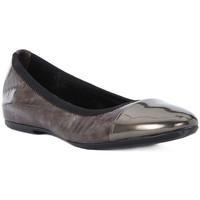 Sapatos Mulher Sabrinas Frau WAVE TAUPE Marrone