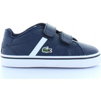 Sapatos Criança Sapatilhas Lacoste 32SPI0110 FAIRLEAD Azul