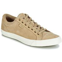Sapatos Homem Sapatilhas Ralph Lauren GEFFREY Camel