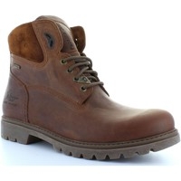 Sapatos Homem Botins Panama Jack AMUR GTX C8 NAPA GRASS CUERO Marrón