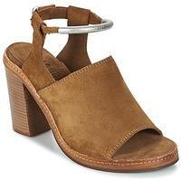 Sapatos Mulher Sandálias Shabbies MARZIO Castanho