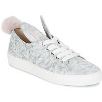 Sapatos Mulher Sapatilhas Minna Parikka TAILS SNEAKS Cinza