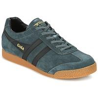 Sapatos Homem Sapatilhas Gola HARRIER Cinza / Preto