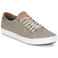 Sapatos Homem Sapatilhas Blackstone NM95 Cinza