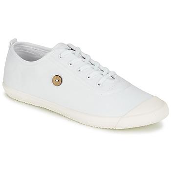Sapatos Sapatilhas Faguo OAK Branco