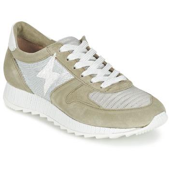 Sapatos Mulher Sapatilhas Mjus HONEY Cáqui