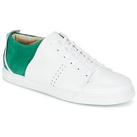 Sapatos Homem Sapatilhas M. Moustache RENE Branco / Verde