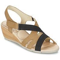 Sapatos Mulher Sandálias Rondinaud COLAGNE Bege / Preto