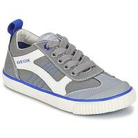 Sapatos Rapaz Sapatilhas Geox J KIWI B. J Cinza