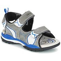 Sapatos Rapaz Sandálias desportivas Geox J BOREALIS B. D Cinza / Azul
