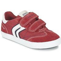 Sapatos Rapaz Sapatilhas Geox J KIWI B. M Vermelho / Marinho