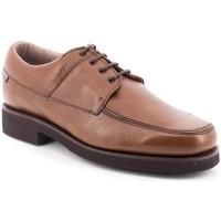 Sapatos Homem Sapatos Losal 2456 Marrom