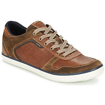 Sapatos Homem Sapatilhas Geox BOX C Castanho