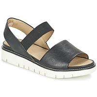 Sapatos Mulher Sandálias Geox D DARLINE C Preto
