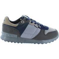 Sapatos Criança Sapatos & Richelieu Bass3d 42054 C GRIS Gris