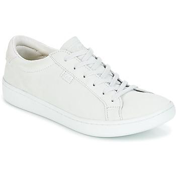 Sapatos Mulher Sapatilhas Keds ACE MONO Cinza
