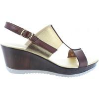 Sapatos Mulher Sandálias Cumbia 30133 Marrón