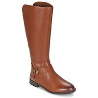 Sapatos Mulher Botas Clarks MINT TREAT GTX Castanho