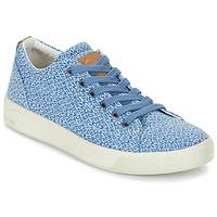 Sapatos Mulher Sapatilhas PLDM by Palladium TILA Azul
