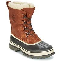 Sapatos Homem Botas de neve Sorel CARIBOU WL Tabaco