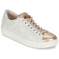 Sapatos Mulher Sapatilhas Tosca Blu  Branco / Ouro