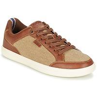 Sapatos Homem Sapatilhas Kickers AART HEMP Castanho / Bege