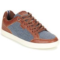 Sapatos Homem Sapatilhas Kickers AART HEMP Castanho / Azul
