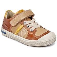 Sapatos Rapaz Sapatilhas Kickers IGORLOW Camel