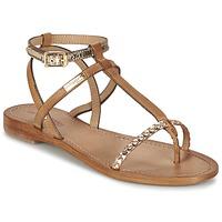 Sapatos Mulher Sandálias Les Tropéziennes par M Belarbi HILATRES Castanho / Ouro