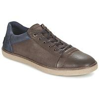Sapatos Homem Sapatilhas Kickers CALIC Castanho / Escuro