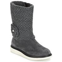 Sapatos Rapariga Botas Geox J THYMAR G. F Cinza