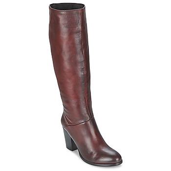 Sapatos Mulher Botas Betty London MIRIDIA Bordô